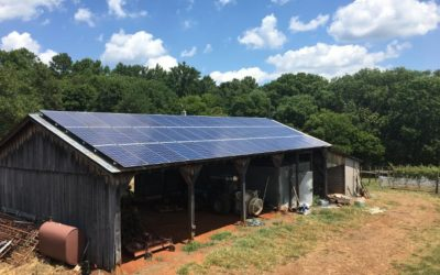 Farmers Contemplate Solar in Dinwiddie
